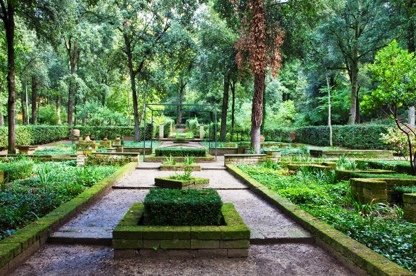 Il_Bosco_Della_Ragnaia_5-©-Charles-Hawes by Rory Stuart  thinkingardens good garden writing