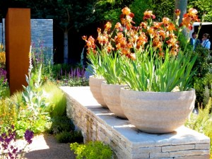 Andy Sturgeon irises @ Darryl Moore, Tim Richardson on garden design, thinkingardens thinking gardens
