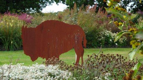 Sussex Prairie Gardens 1. Copyright Darryl Morre