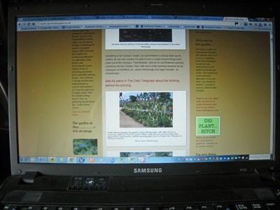 Noel's Blog 3 copyright Anne Wareham