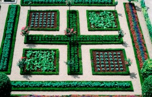 The potager at Villandry, Loire, France. June copyright Charles Hawes for thinkingardens