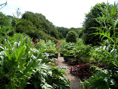 Charles' Garden at Veddw copyright Anne Wareham