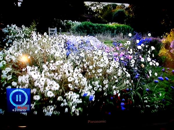 Show Me Your Garden tv still photo on thinkingardens
