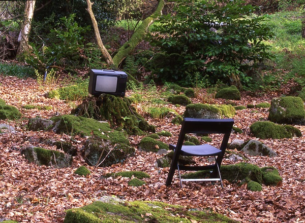 Television in the Woods at Veddw, copyright Charles Hawes