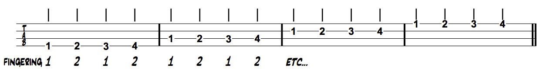 Thinking Musician Bass Chromatics