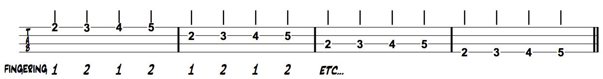 Thinking Musician Bass Chromatics 2