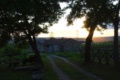 Alviano, Italy
