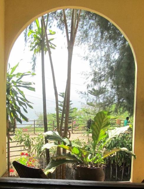 Las Flores Coffee Farm - Nicaragua