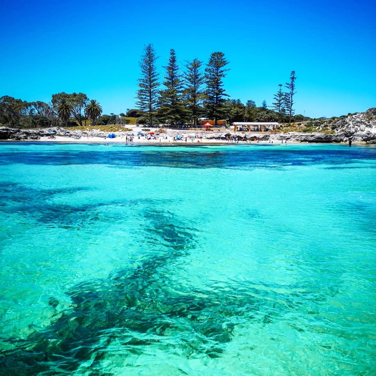 Rottnest Island Australia: All You Need To Know To Visit Rottnest Island With Kids In