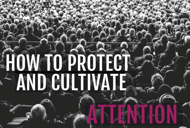 The Important Truth About Attention: How to Protect and Cultivate Our Most Valuable Resource