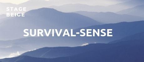 stage beige survivalsense spiral dynamics