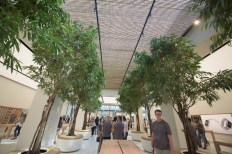 Apple Store in Dubai's Mall of the Emirates15