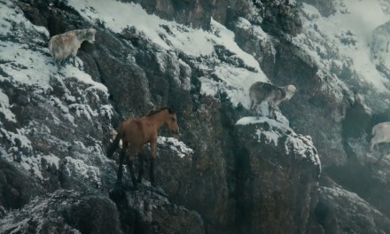 AdWatch: Ford   Raised by Goats