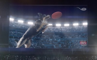 AdWatch: Nutro | Dogs give everything 100%