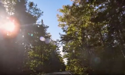 AdWatch: Pure Michigan | Open Road