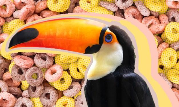 Kellogg's Toucan Sam follows his beak to the Thanksgiving feast
