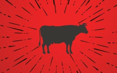 Steak-umm Makes Us Go Hmmm