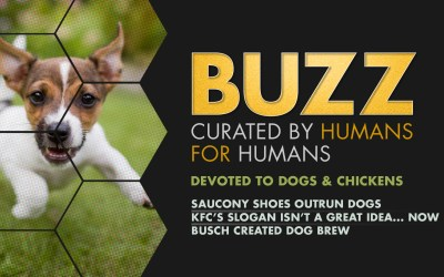 Weekly Buzz: Devoted to Dogs & Chickens