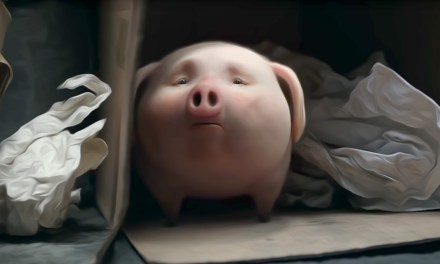 AdWatch: Santander Bank | Piggy