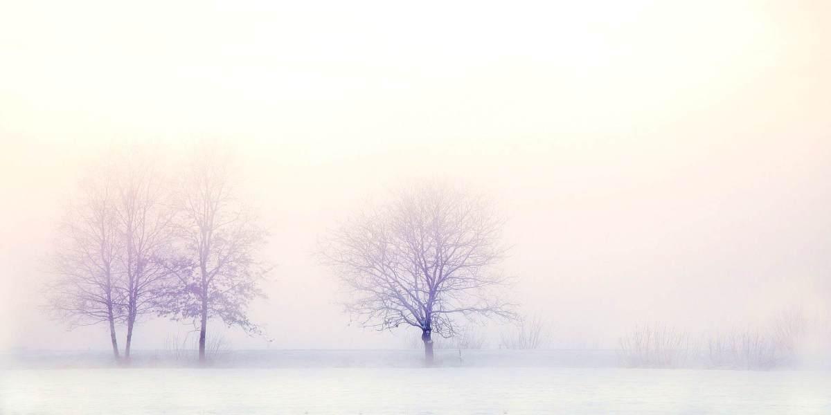 Как не умереть русской зимой (от тоски)