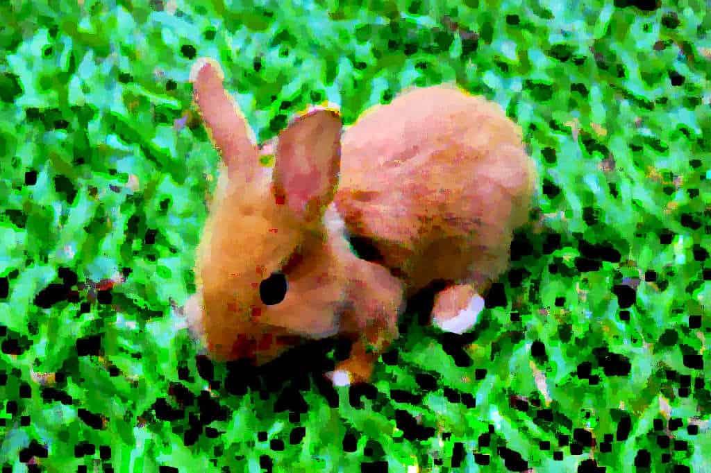 Как бороться с синдромом «воспитанного кролика»