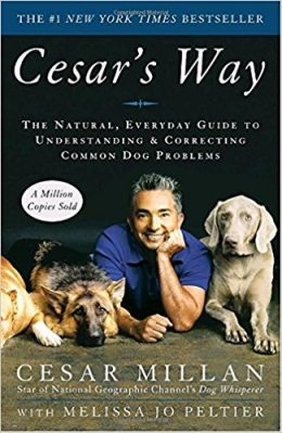 a book guids to common dog problems