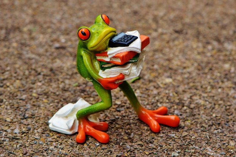 This frog seems to love his work!