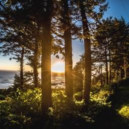 Two week summer break on the Oregon coast