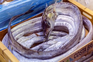 London Fish Market 004