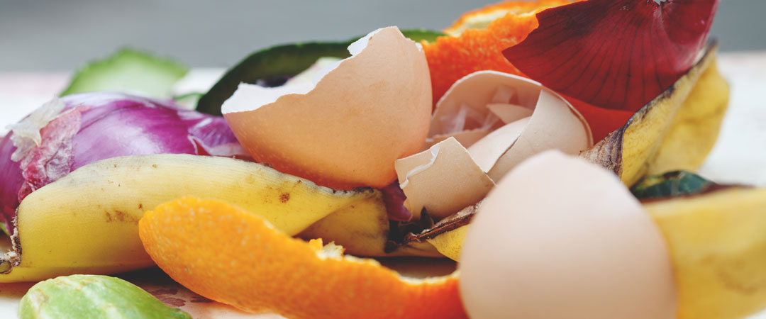 Egg shells and other things not to put down a garbage disposal with a septic tank