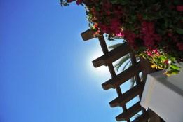 California sunshine and blue skies