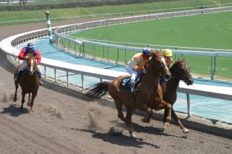 Race-Track-Venus-Vegas-Luis-Moro-Productions-race