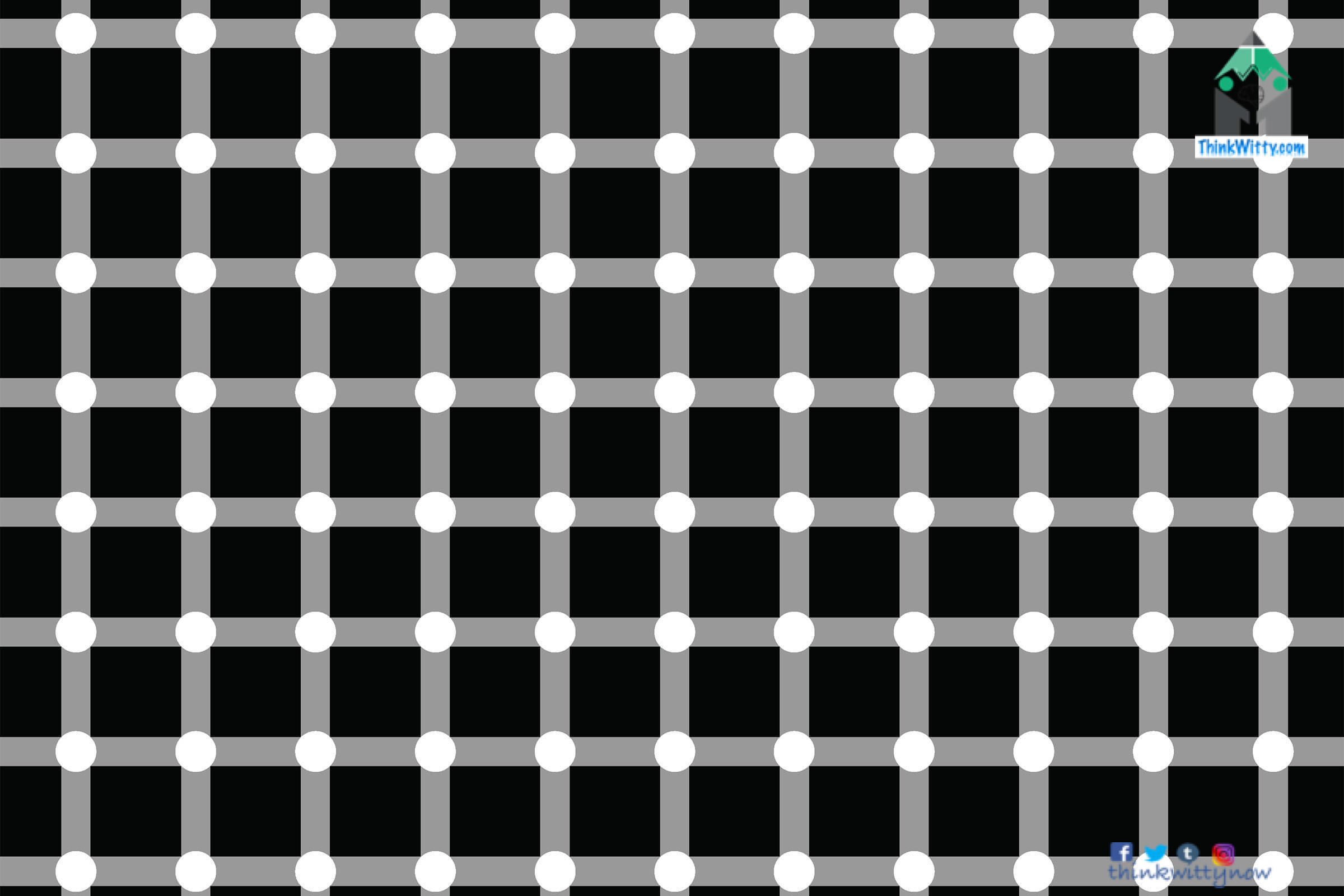 Optical Illusion thinkwitty.com - Scintillating Grid Illusion