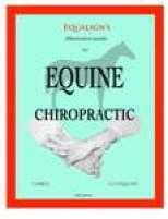 Chiropractor Endorsed
