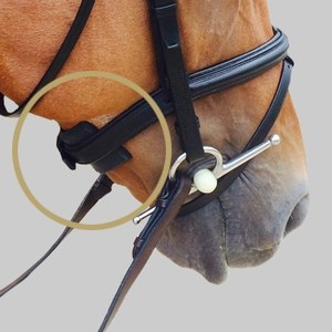 ThinLine Chin, Poll and Noseband Guard