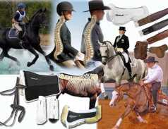 Horseback riding safety tips Preventing hidden spine concussion
