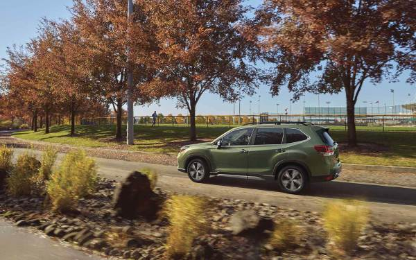 2019 Subaru Forester exterior in Jasper Green