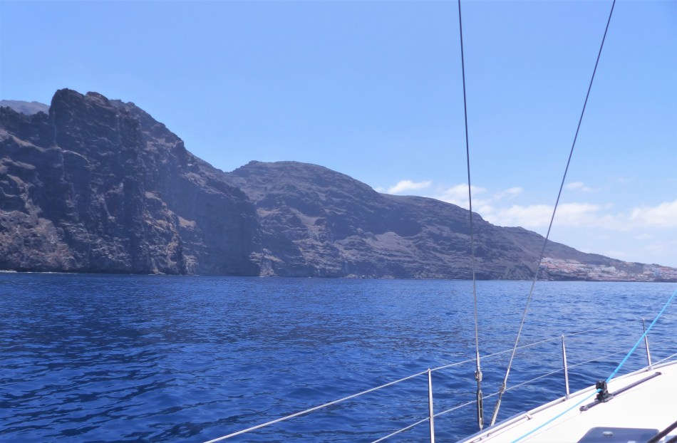 Whale watching ln Tenerife