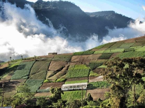 The Highlands of Guatemala