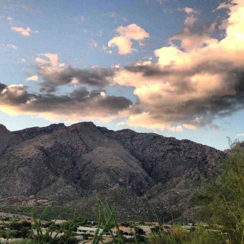 Tucson Arizona Cathalinas