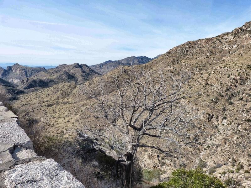 Mount Lemmon Scenic Byway Tucson Arizona