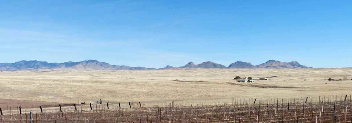 Sonoita Arizona vineyards
