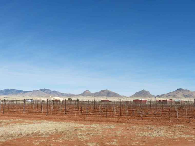 Sonoita Arizona Wine Country
