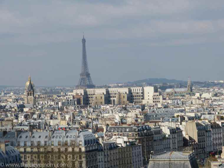 On top The Notre Dame Cathedral Paris