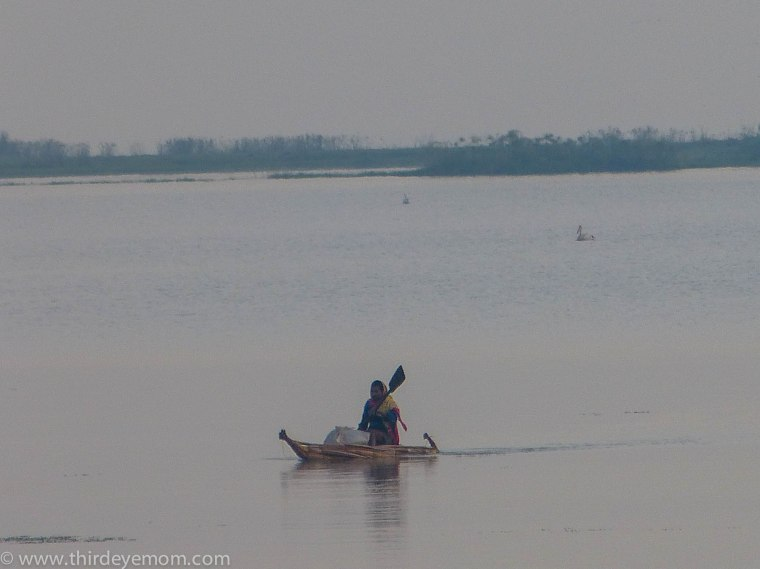 Papyrus boats on Lake Tana, Ethiopia.