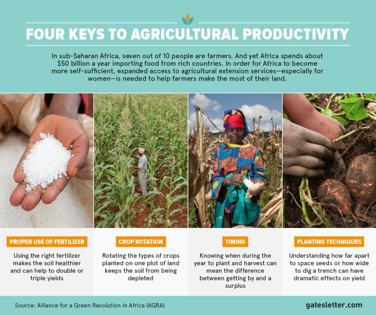 2015-AL_Tier2_Farming_Four-Keys-to-Ag-Productivity_FACEBOOK_FINAL_EN-V2 copy