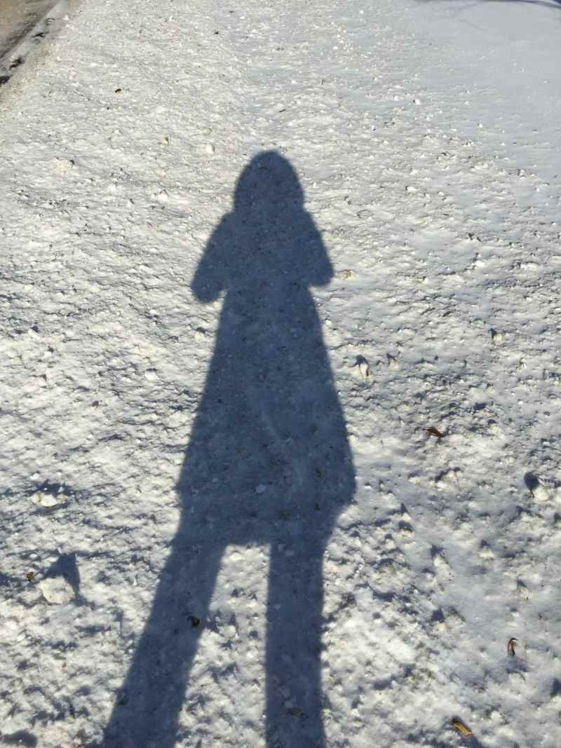 My shadow and I on a cold winter's day.
