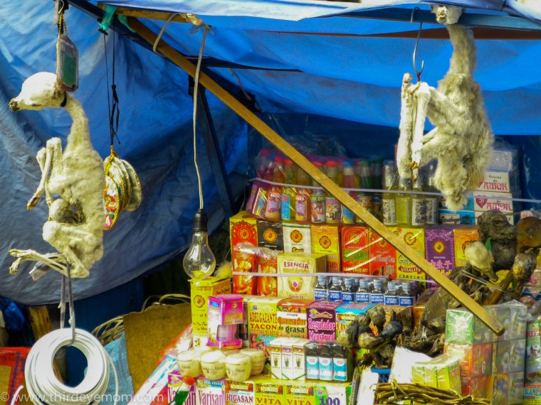 Witches Market La Paz Bolivia
