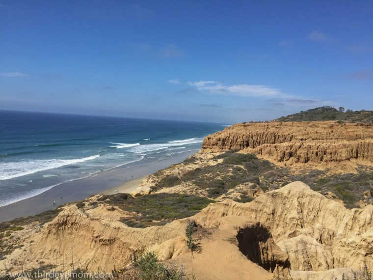 Torrey Pines State Natural Reserve San Diego CA