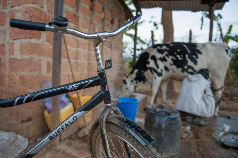 Georgina, a farmer in Zambia, who uses the Buffalo Bicycle.